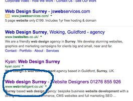 Page 1 of Google for Web Design Surrey